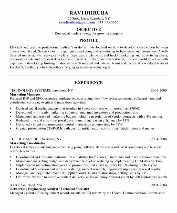 Social Media Marketing Resume Sample Best Resume Gallery