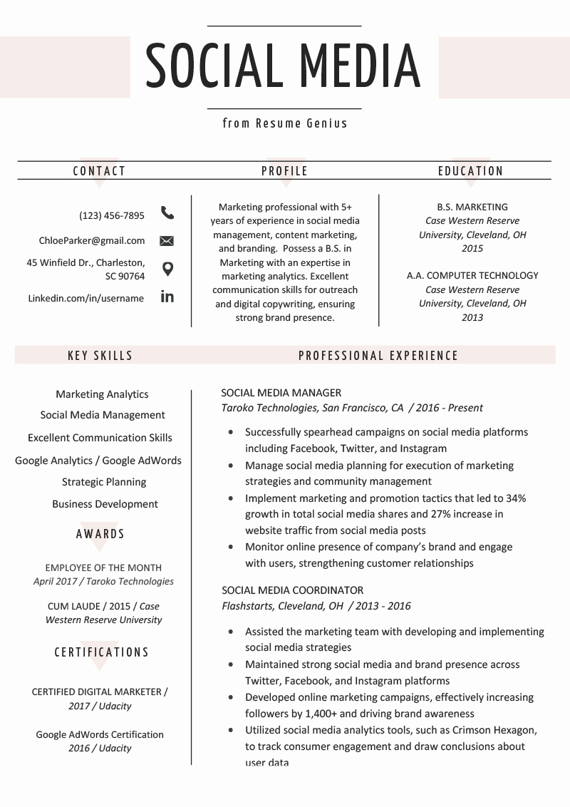 Social Media Resume Example & Writing Tips