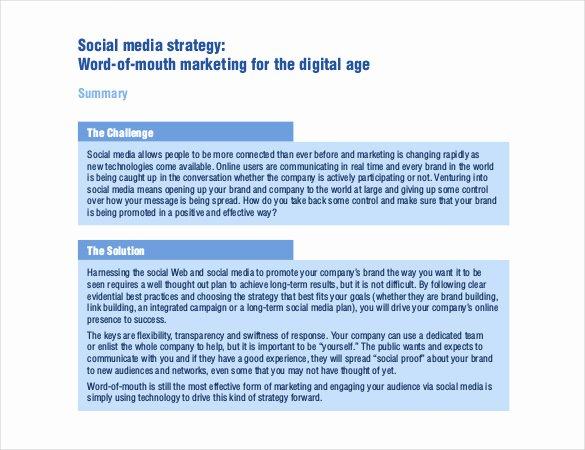 Social Media Strategy Template 8 Free Pdf Documents