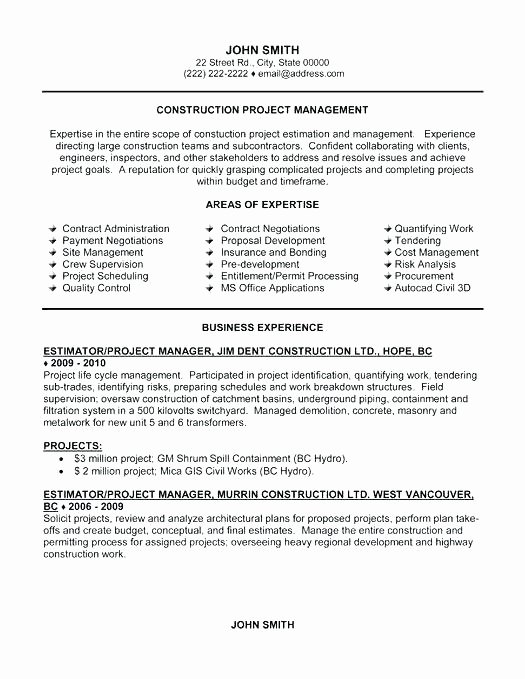Software Development Project Manager Resume Examples