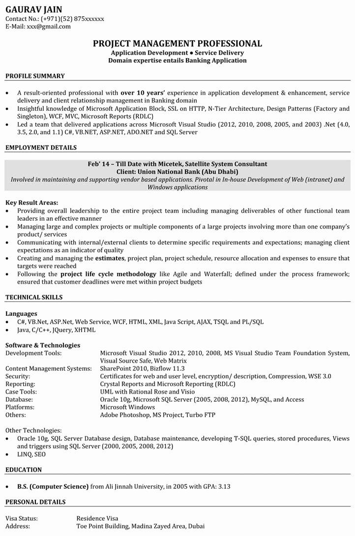 Software Engineer Sample Resume