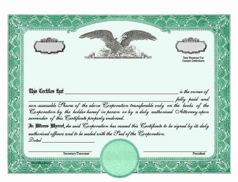 Stock Certificate Designs