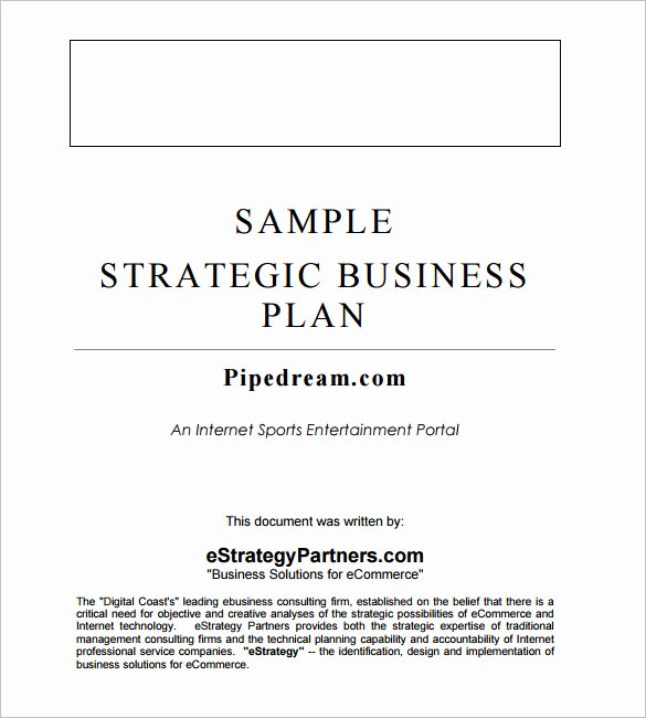 Strategic Business Plan Template 9 Free Word Documents