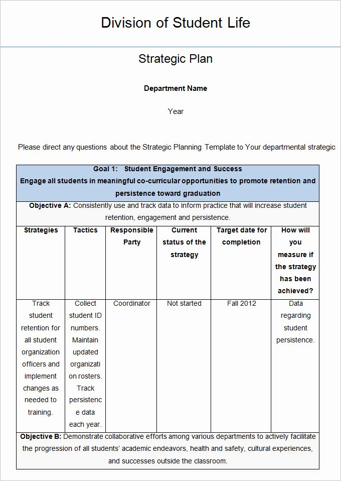 Strategic Life Plan Template 5 Free Word Pdf Documents