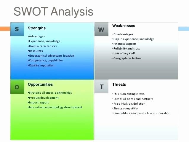 Strategic Planning Nonprofit Template Free Non Profit Plan