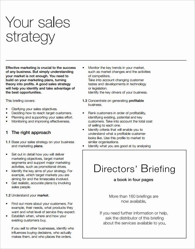 Strategic Sales Plan Templates 8 Free Sample Example
