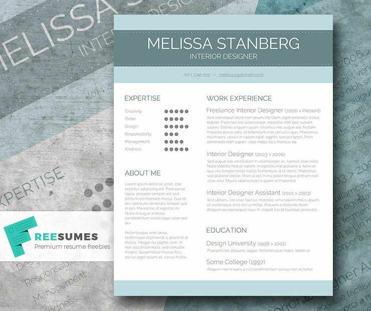 Stylish Cv Template Freebie the Modern Day Candidate