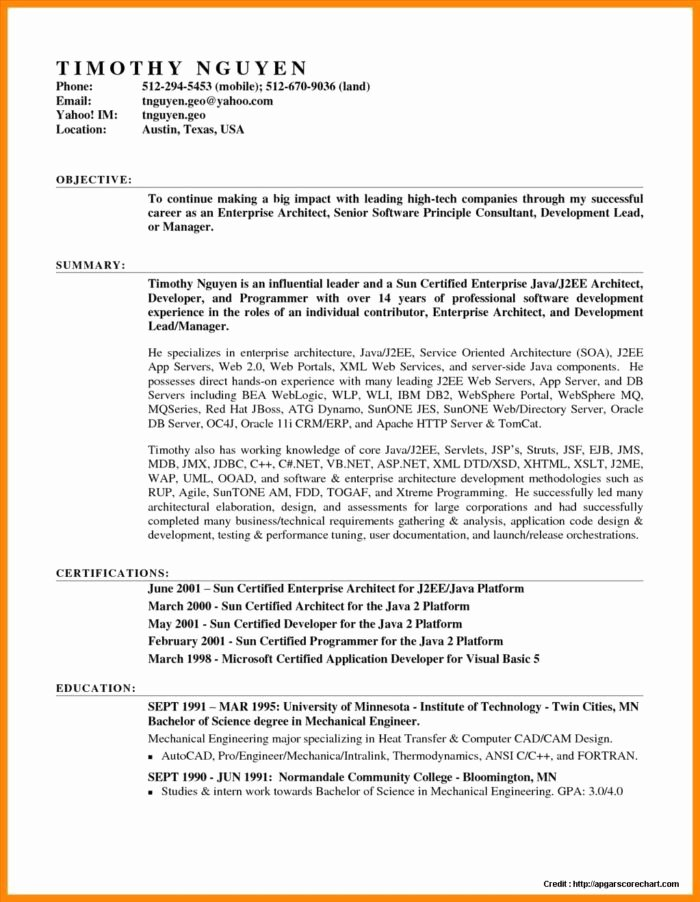 teacher resume templates word free