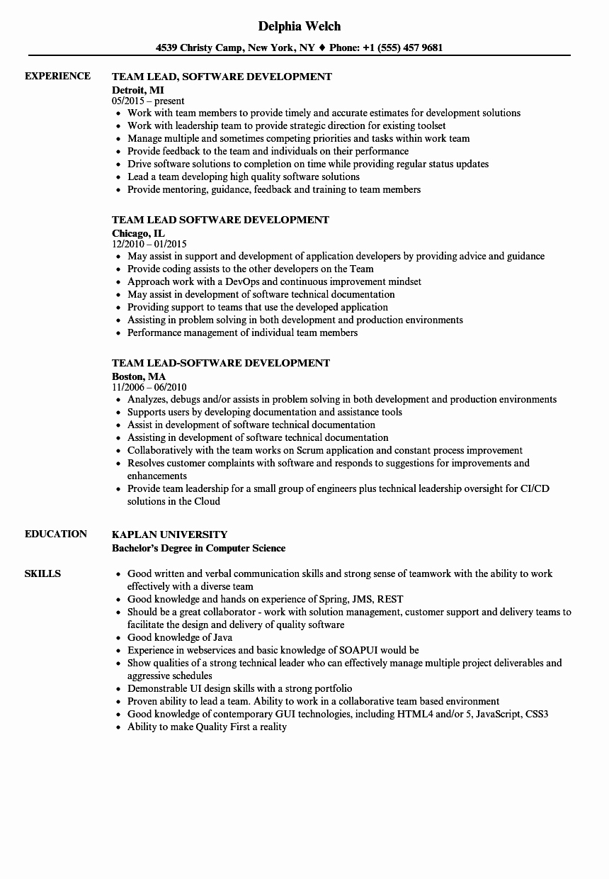 Team Lead software Development Resume Samples