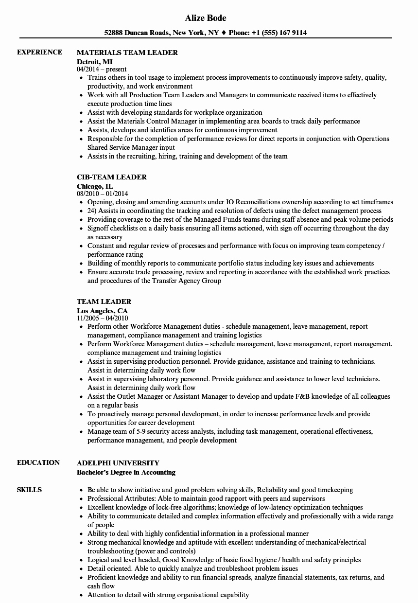 Team Leader Resume Example Team Leader Resume Examples