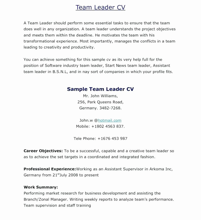 Team Leader Resume Objective Examples Sample Samples