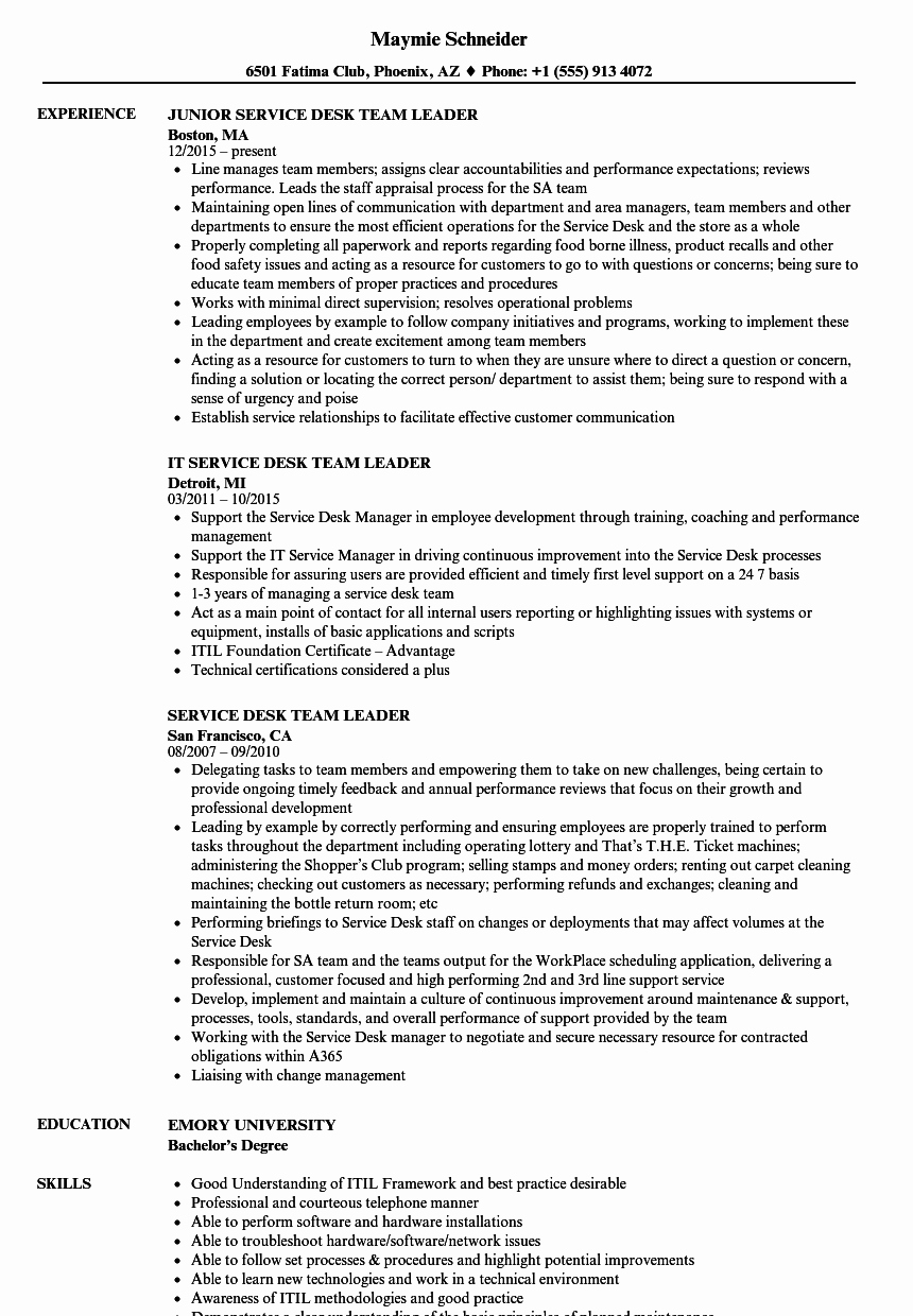 Team Leader Resume Sample Nmdnconference Example