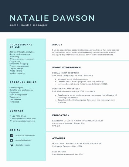 Techie Web Developer Resume Templates by Canva