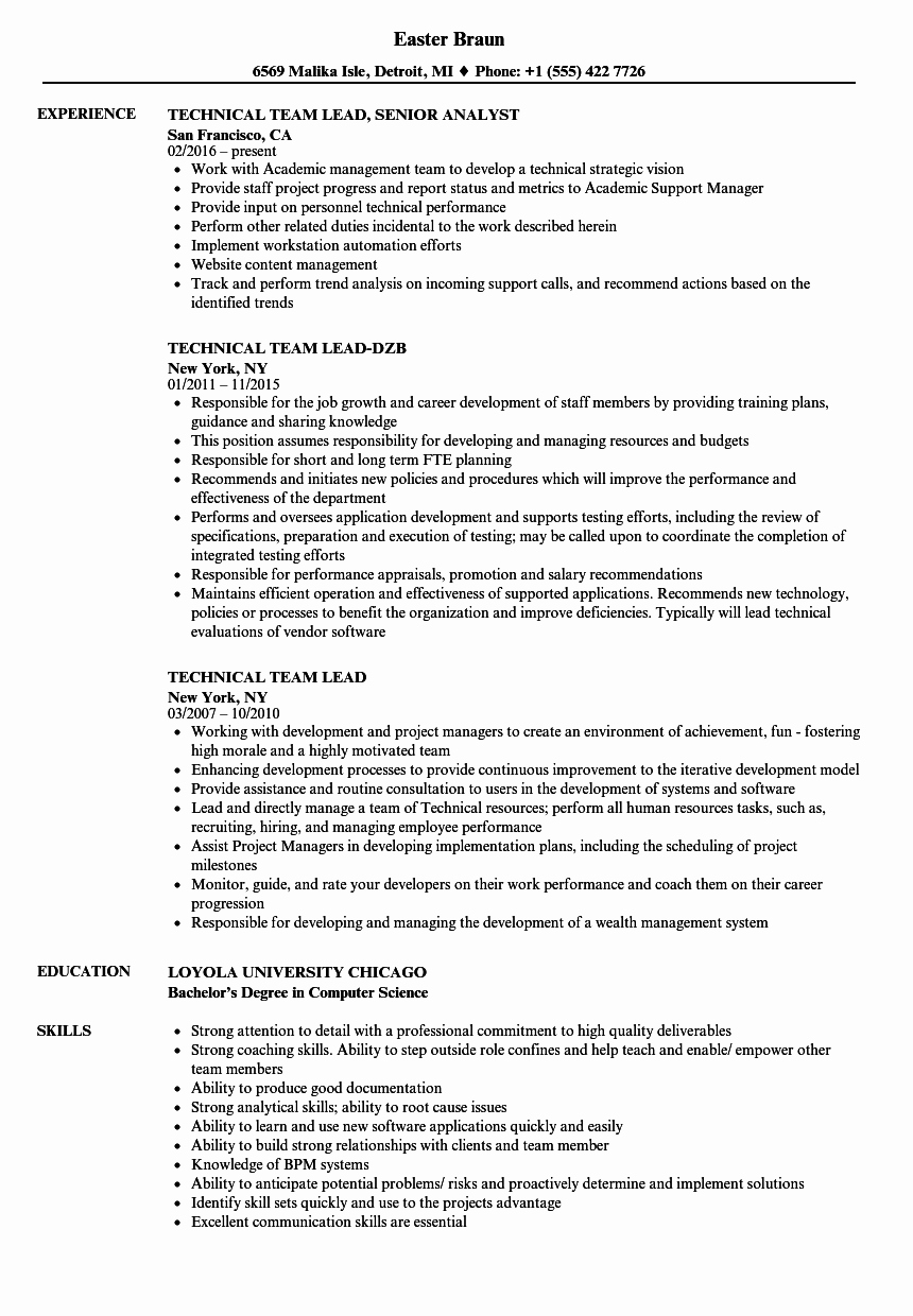 Technical Team Lead Resume Samples