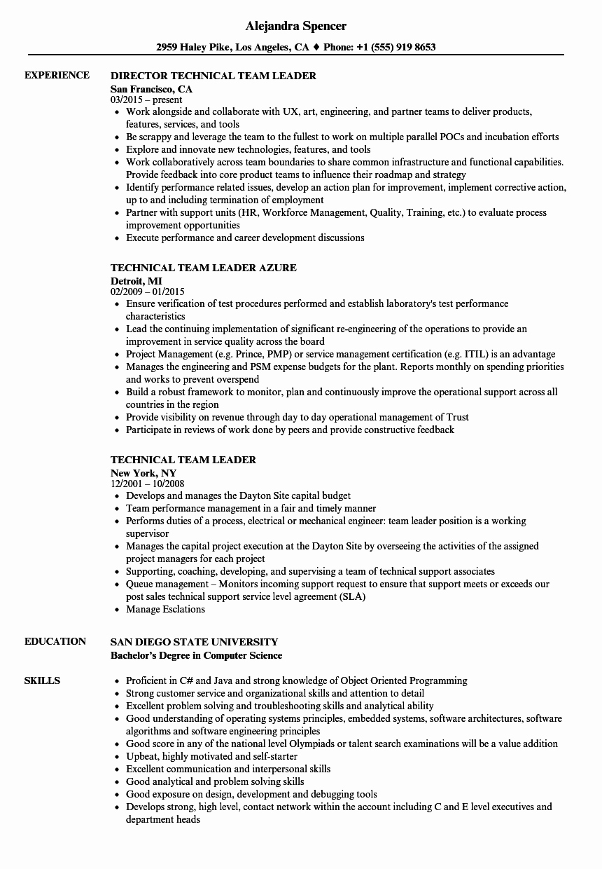Technical Team Leader Resume Samples