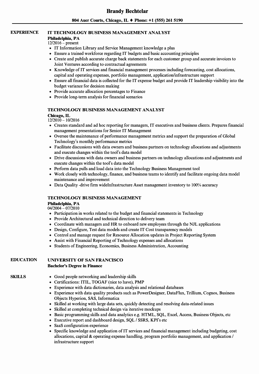 Technology Business Management Resume Samples