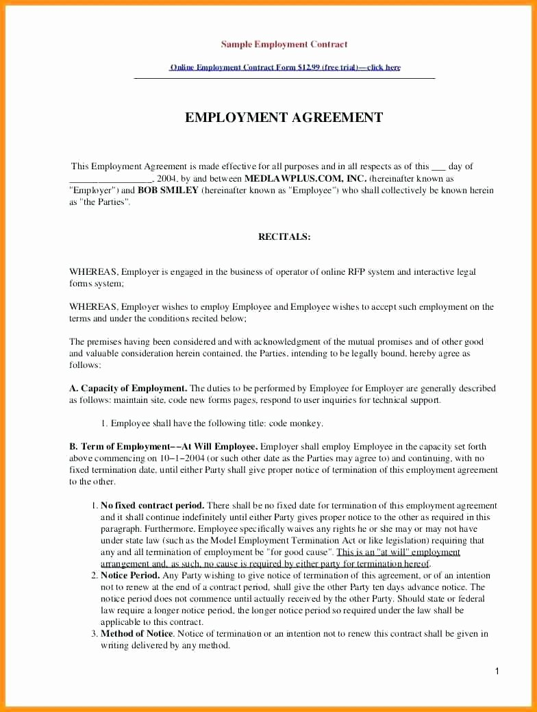 Template Employment Contract Template