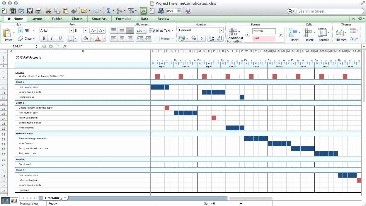 Template issue Tracking Excel Template