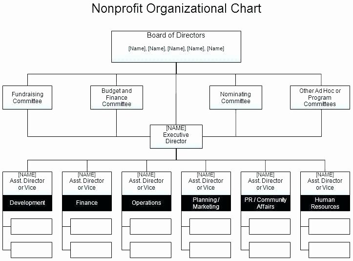 Template Non Profit organization Chart Template Sample