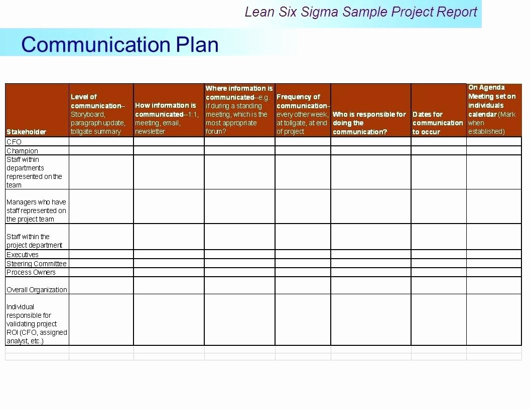 Template Project Team Munication Plan Template