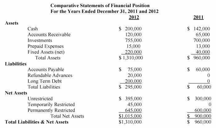 Templates Non Profit Financial Statement Template