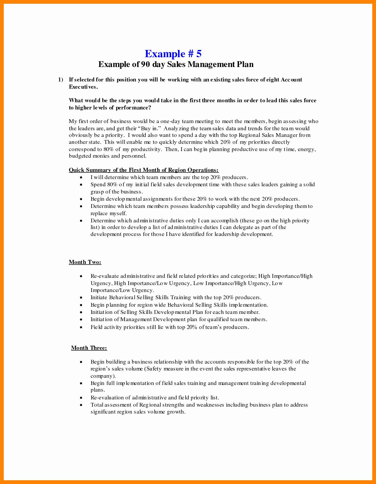 Territory Sales Plan Template Portablegasgrillweber