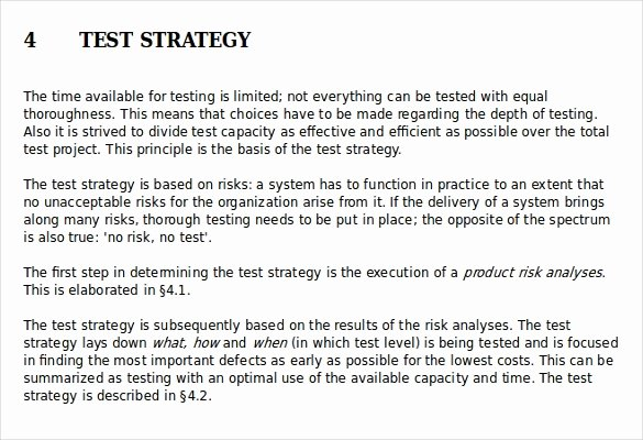 Test Strategy Template – 11 Word Pdf Ppt Documents