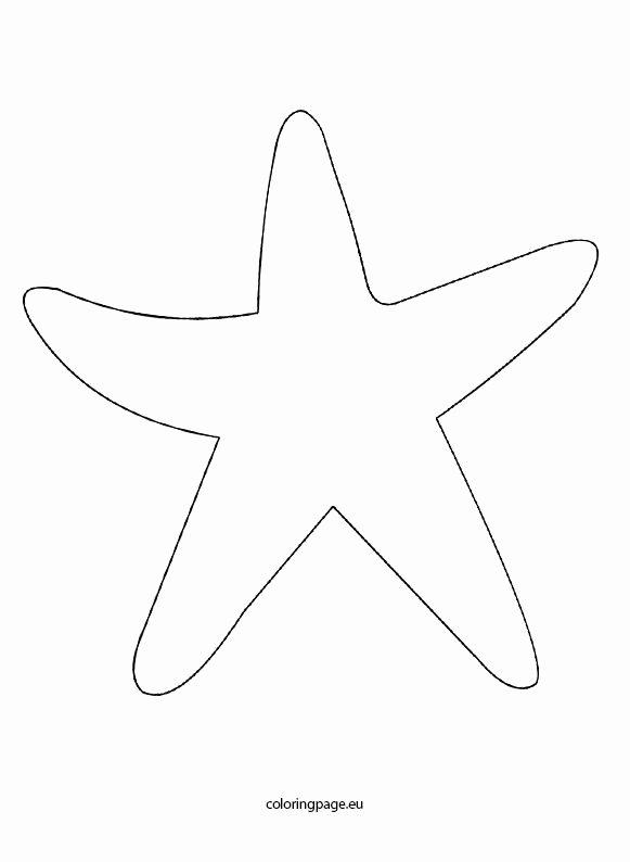 The 25 Best Starfish Template Ideas On Pinterest
