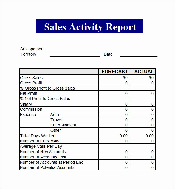 The Gallery for Sales Call Report Template Excel