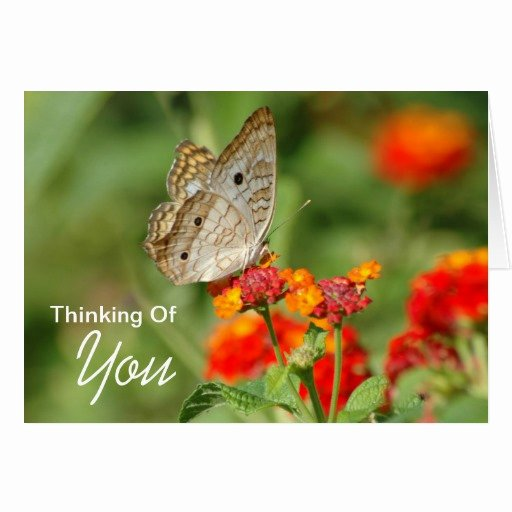 Thinking You Card