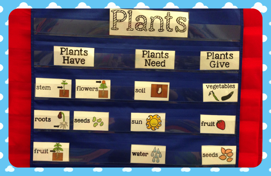 Time 4 Kindergarten Plants and Preparing for Earth Day