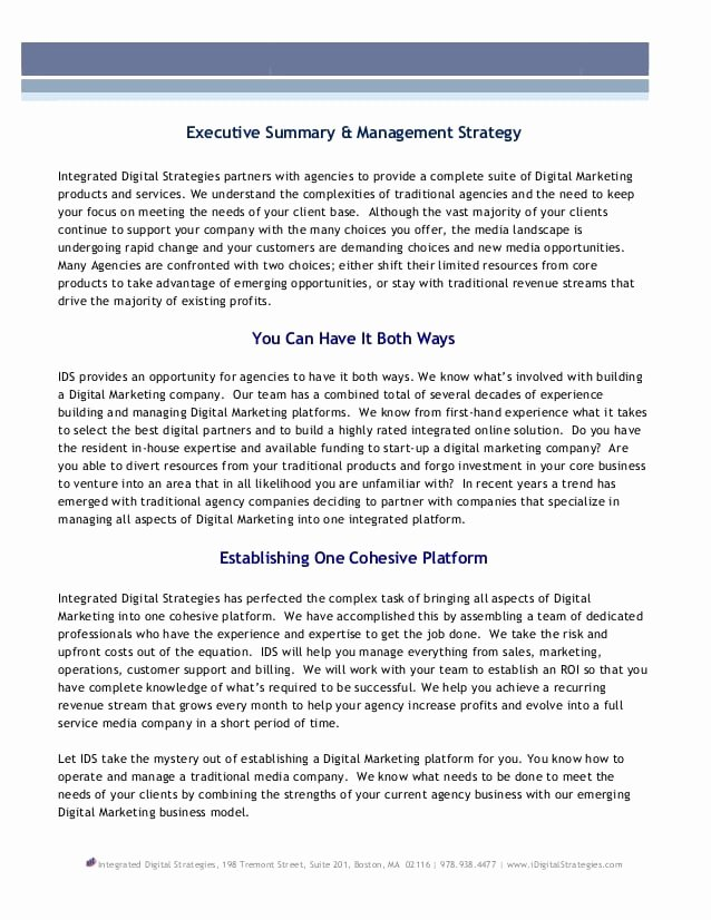 Top 5 Free Executive Summary Templates Word Templates