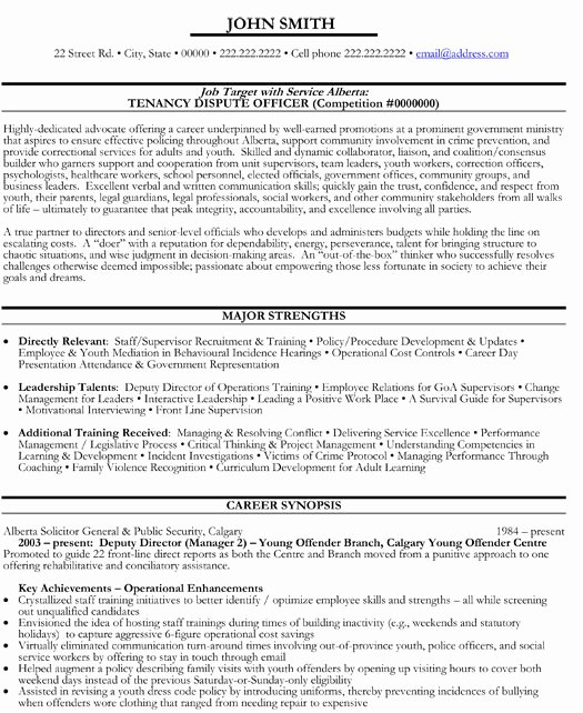Top Government Resume Templates & Samples