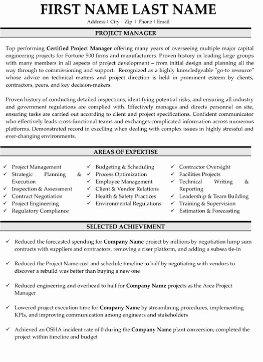 Top Project Manager Resume Templates & Samples