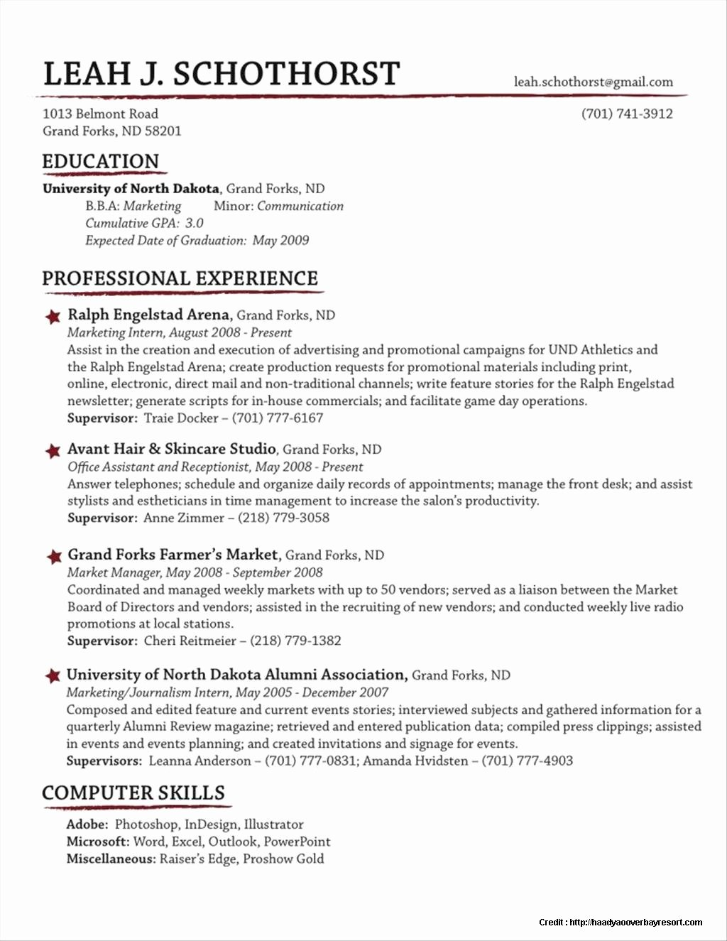 Traditional Resume Template Free Resume Resume