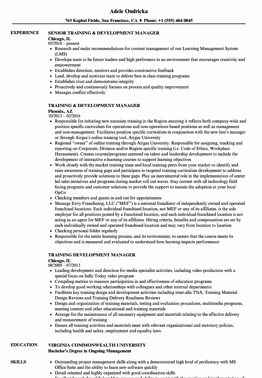 Training & Development Manager Resume Samples