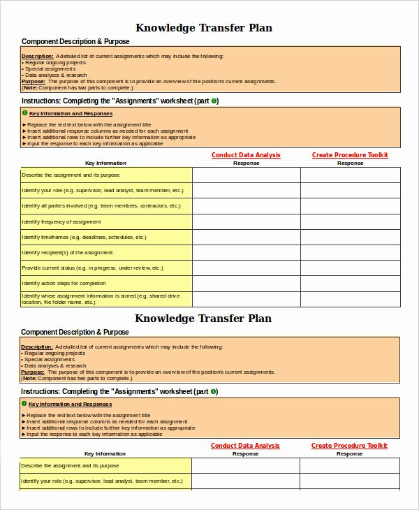 Transition Plan Template 6 Free Sample Example format