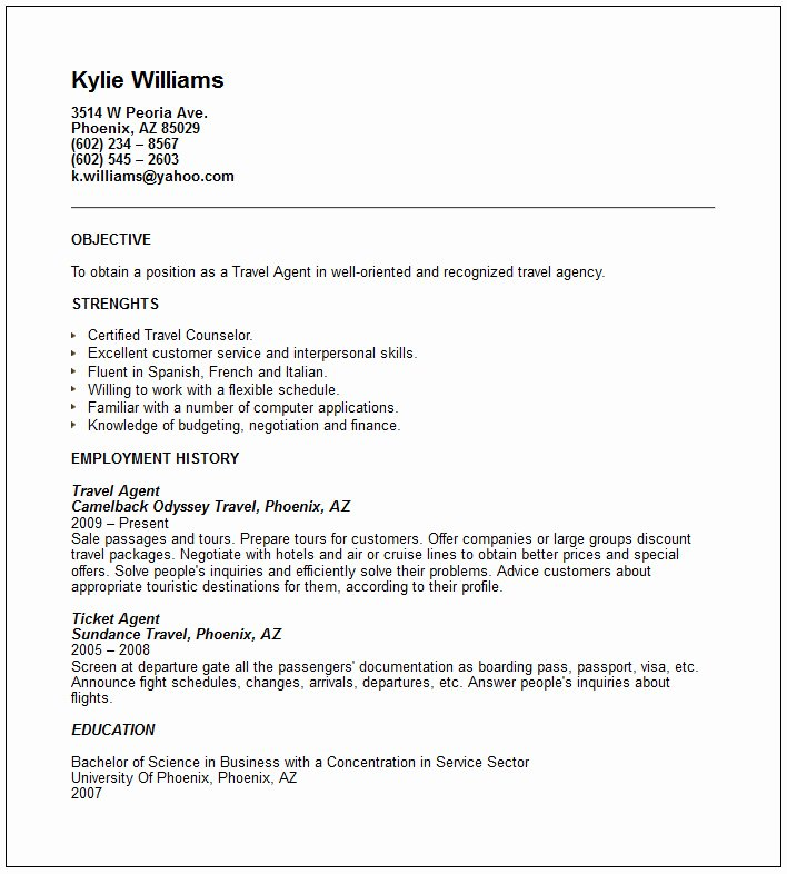 Travel and tourism Industry Resume Examples