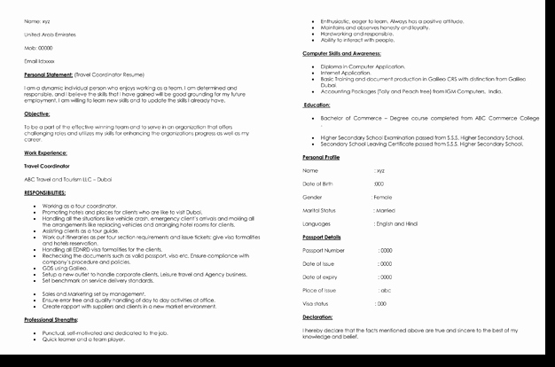 Travel Job Resume Template 7 Samples for Travel Related