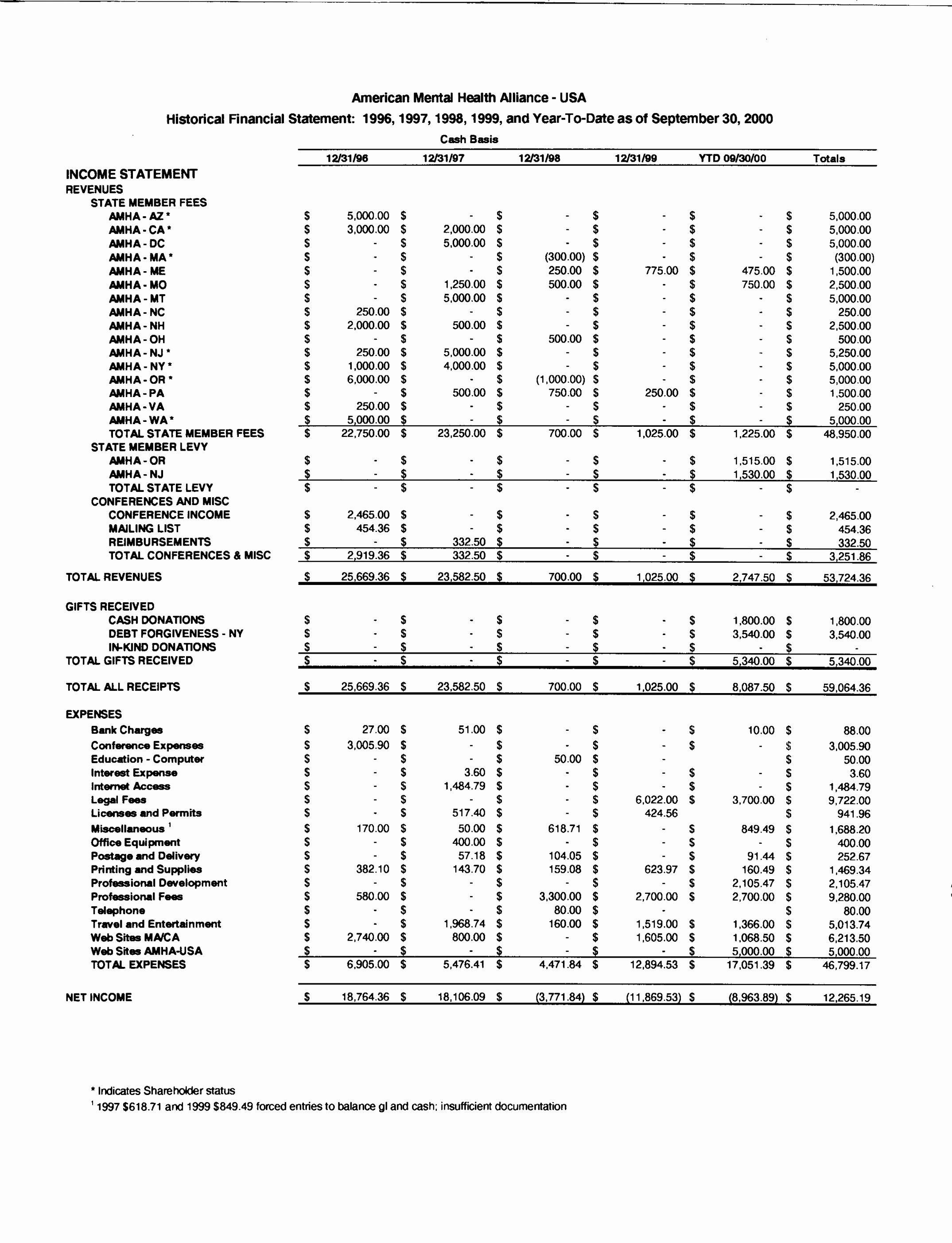 Treasurer Report Sample Template Non Profit Cool