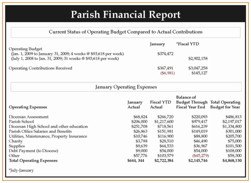 Treasurer Report Template Excel Nonprofit Bud Template