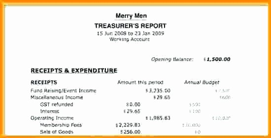 Treasurer Report Template Excel Treasurers form Ly by