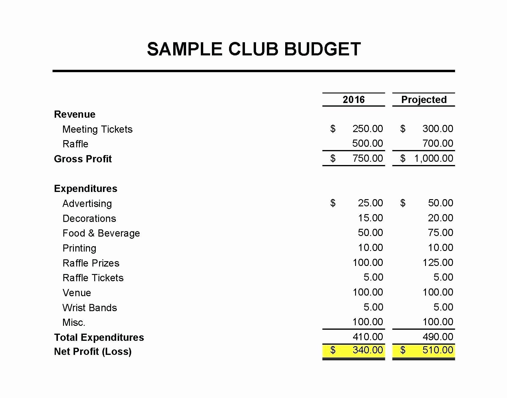 Treasurer Report Template Non Profit