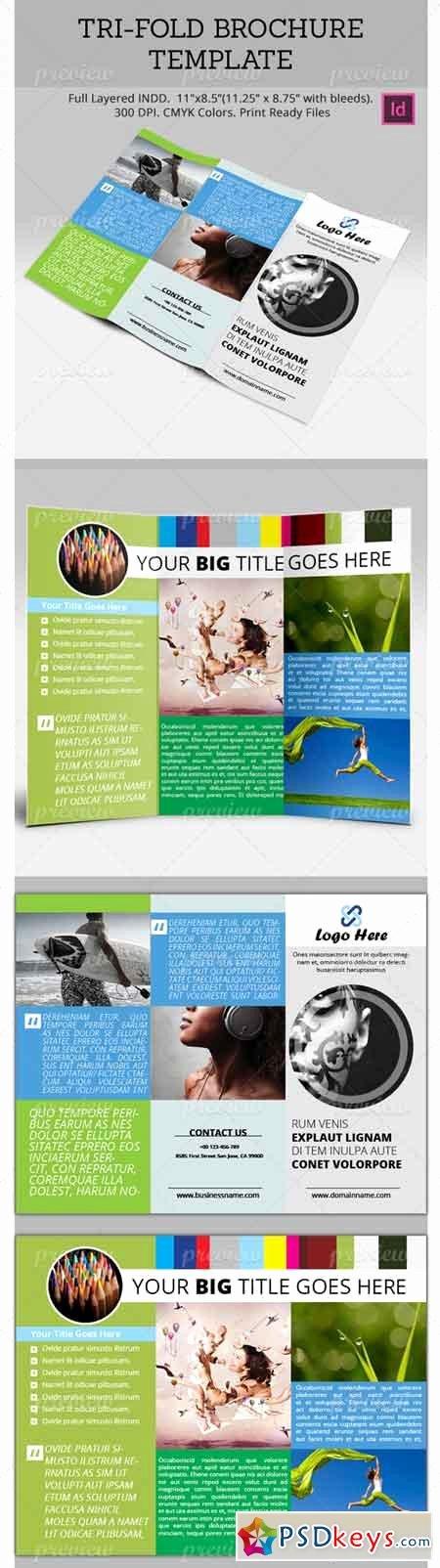 Tri Fold Brochure Template 2049 Free Download Shop