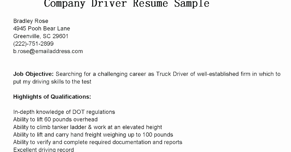 Truck Driver Job Application form Template Unique