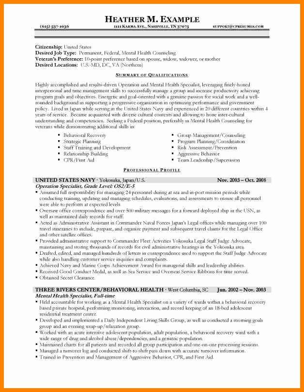 usa resume samples