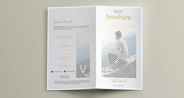 Vertigo Bi Fold Brochure Template