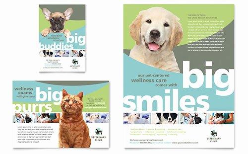 Vet Clinic Brochure Template Design