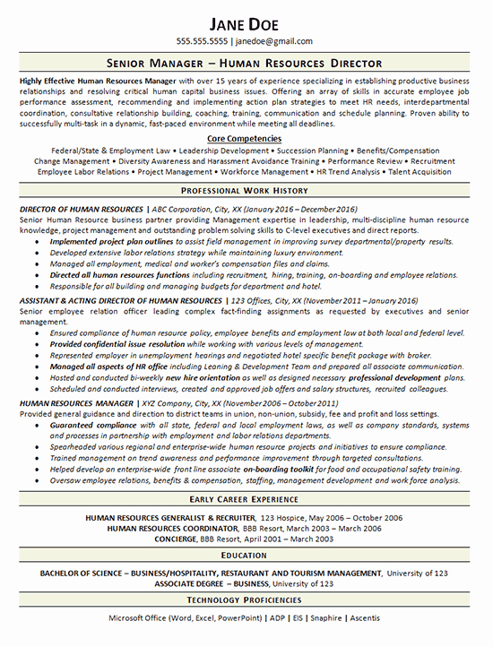 View Human Resources Manager Resume Example