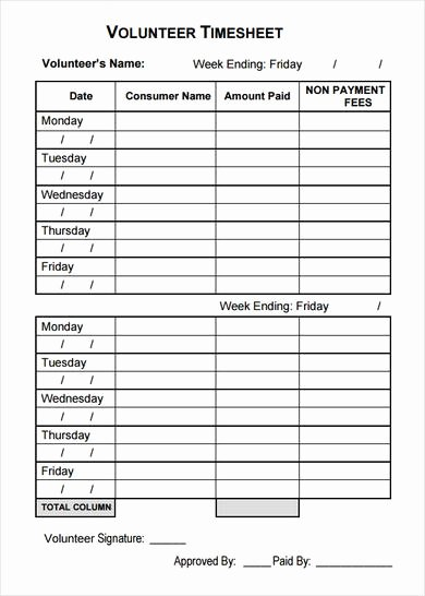 Volunteer Schedule Template